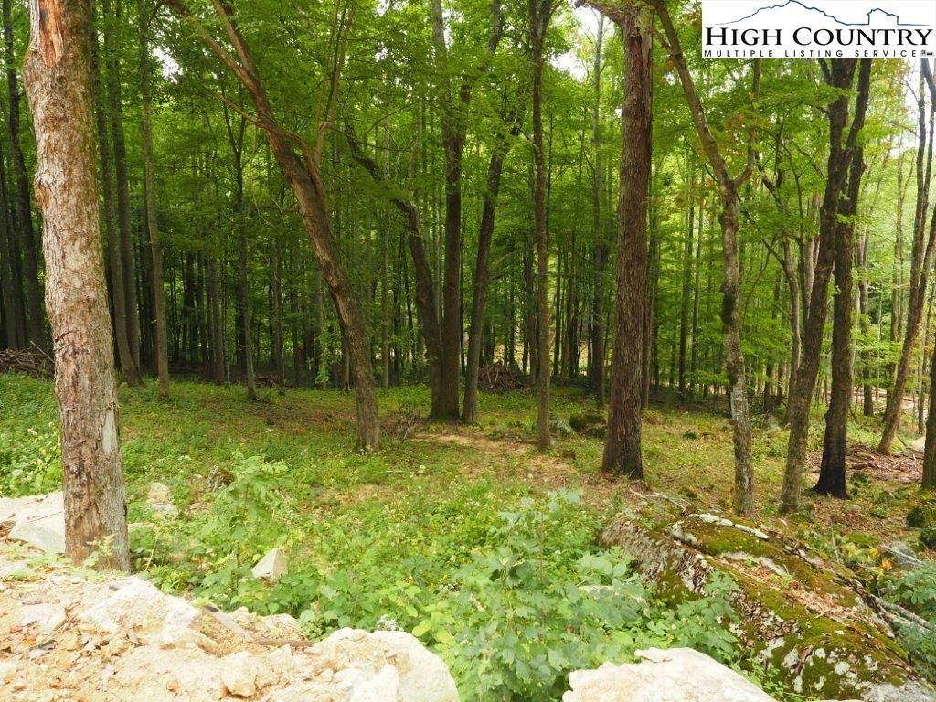 C91 Smokerise Trail